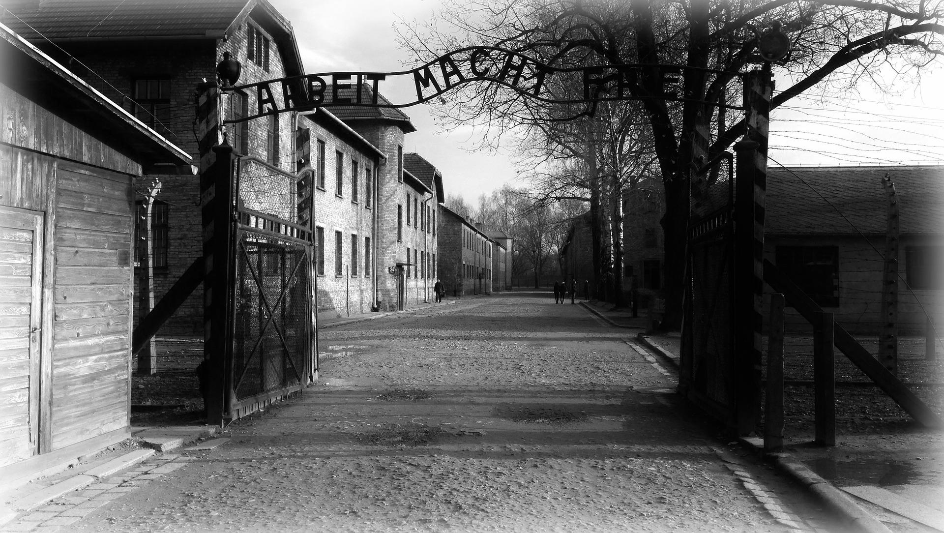 Auschwitz And Salt Mine Tour In 1 Day
